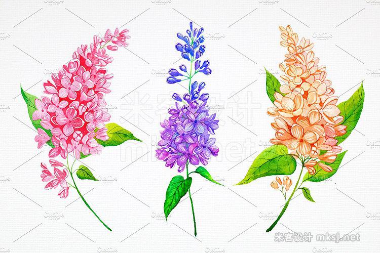 png素材 Lilac Watercolor illustrations