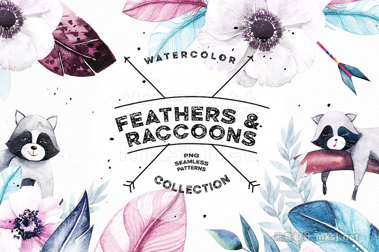 png素材 Watercolor Feathers Raccoons