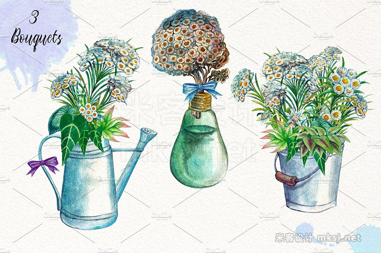 png素材 Watercolor Edelweiss