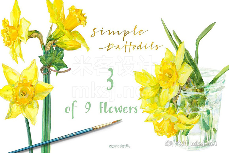 png素材 Simple Daffodils