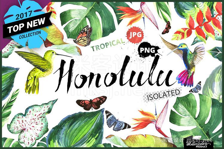 png素材 Tropical clipart PNG watercolor