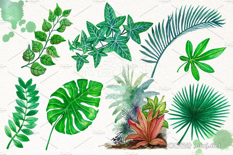 png素材 Tropical Leaves in the Jungle