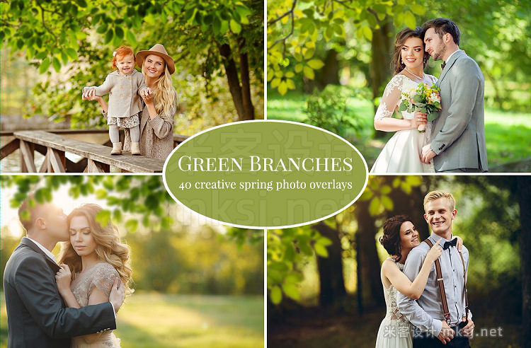 png素材 Green Branches photo overlays