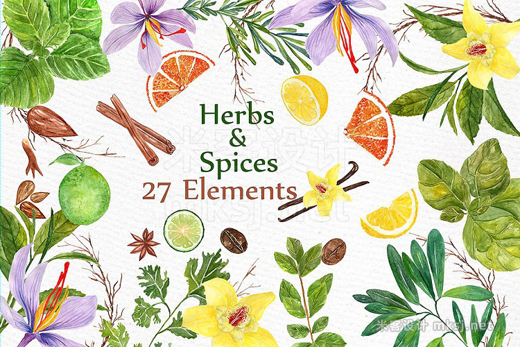 png素材 watercolor Herbs and spices clipart
