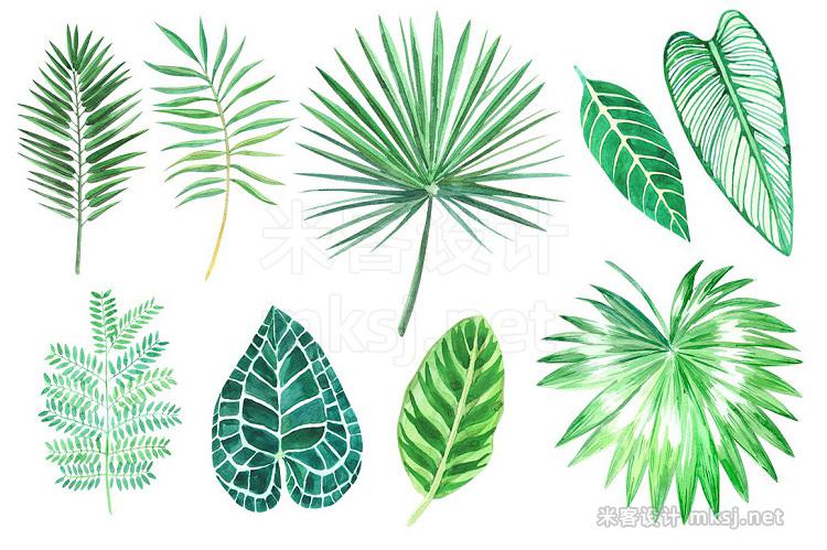 png素材 Tropical leaves Watercolor clip art