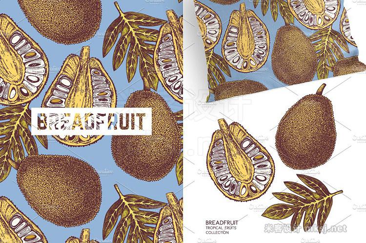 png素材 Tropical Fruits Plants Patterns