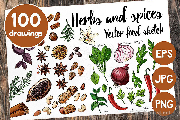 png素材 Sketches herbs and spices