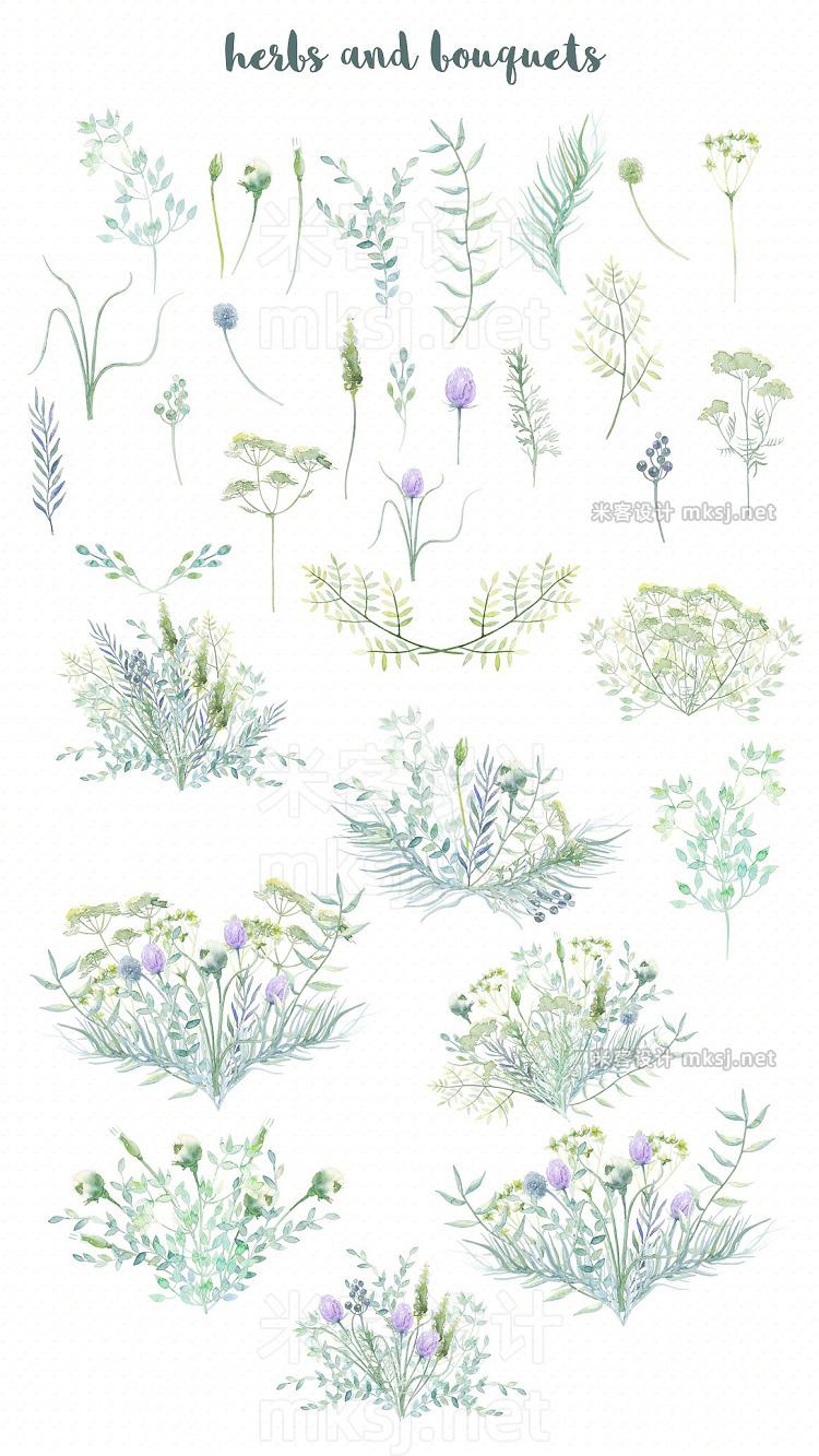 png素材 Watercolor Wild Herbs