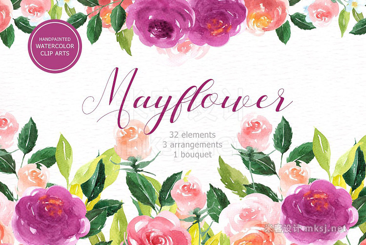 png素材 Mayflower Floral Watercolor clipart
