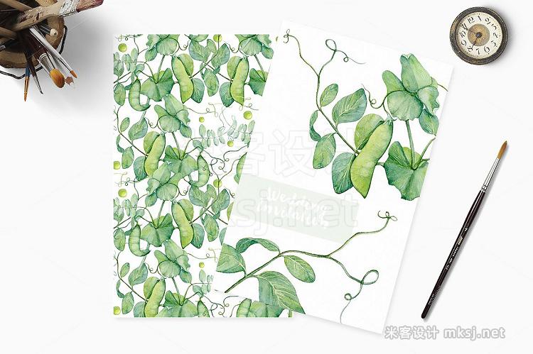 png素材 Watercolor botanic peas