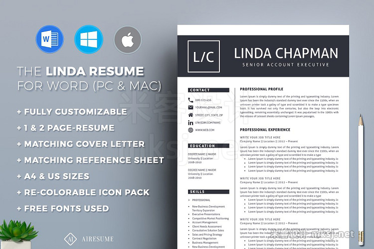 png素材 Resume CV Template