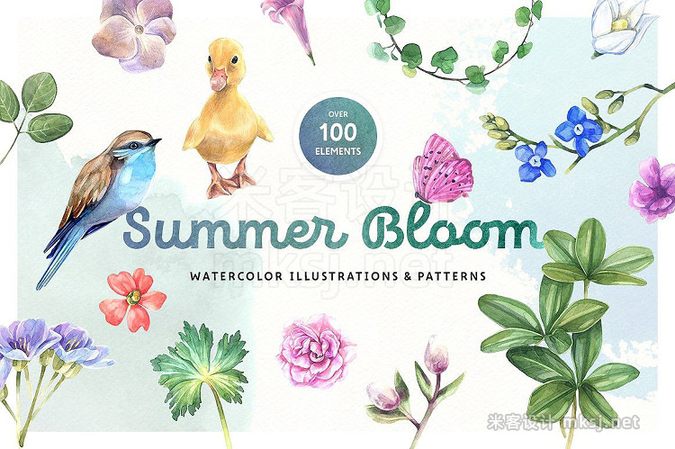 png素材 Summer Bloom Watercolor Set