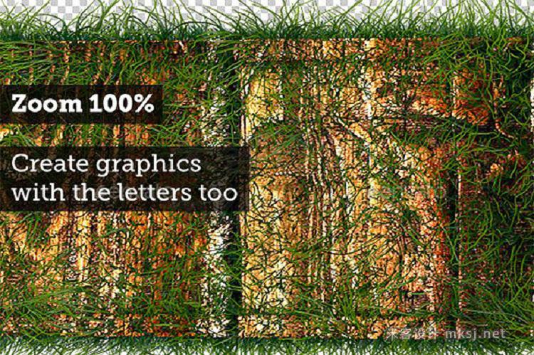 png素材 3D Wood Alphabet Text with Grass