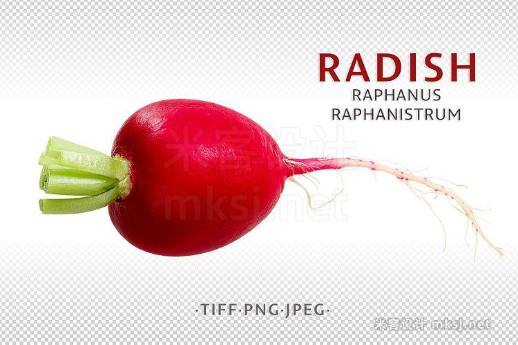 png素材 Radish