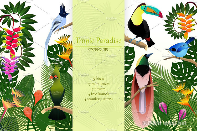 png素材 Tropical birds collection