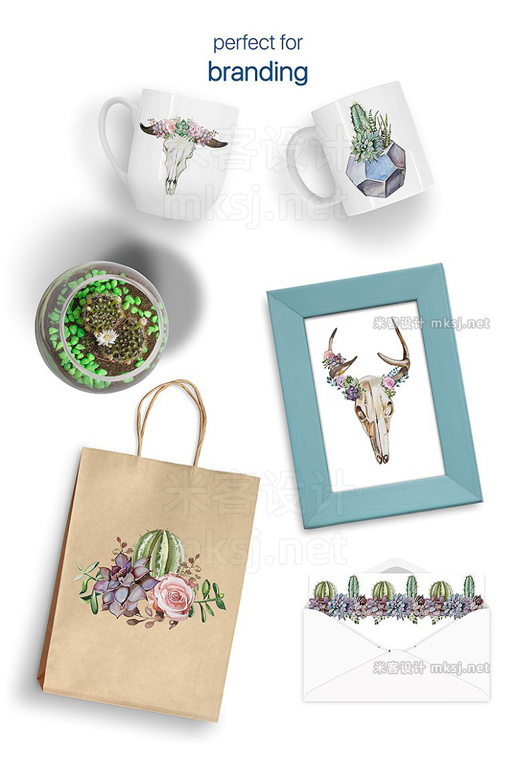 png素材 Watercolor Wild Succulent Garden Set