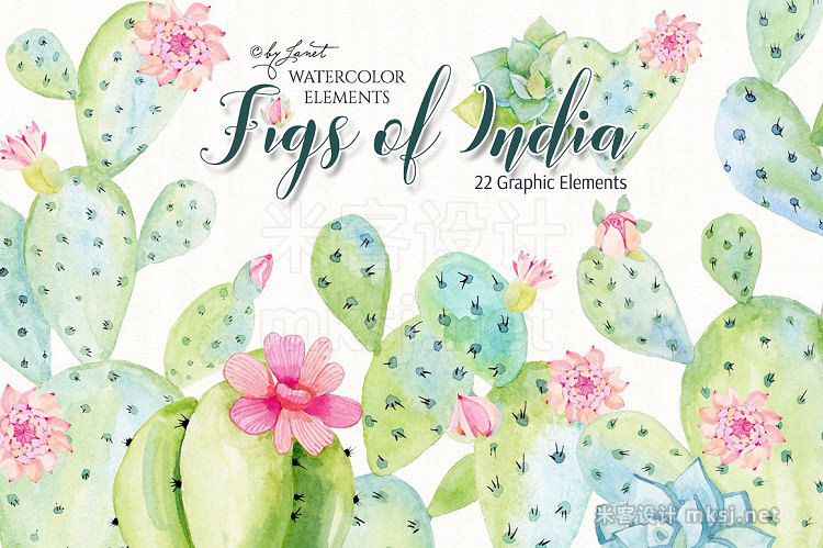 png素材 Figs of India Watercolor