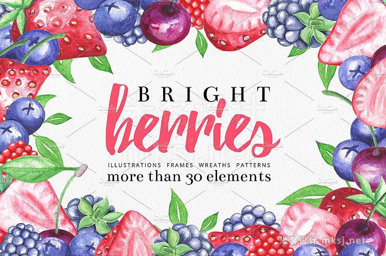 png素材 Bright Berries Illustrations