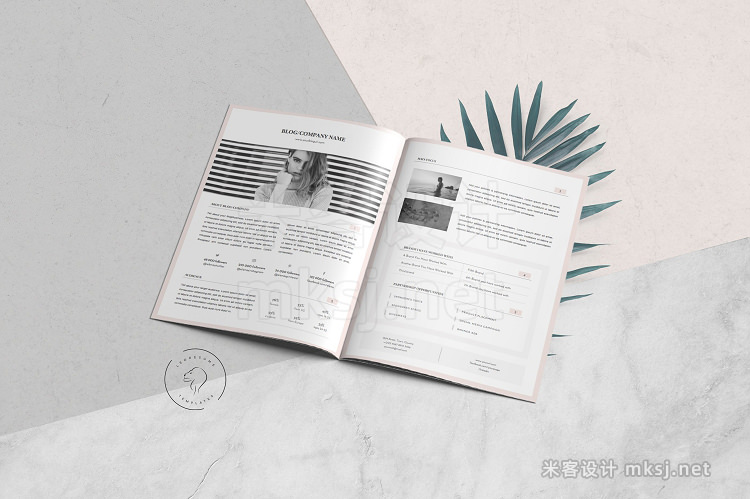 png素材 Media Kit Template - 3 Pages