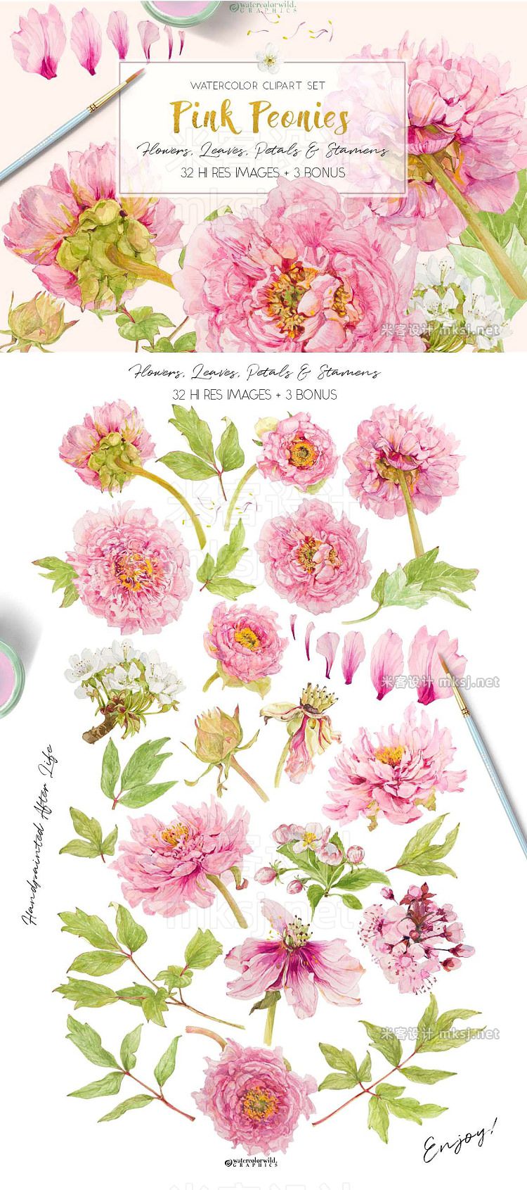png素材 Pink Peonies-Clipart Set