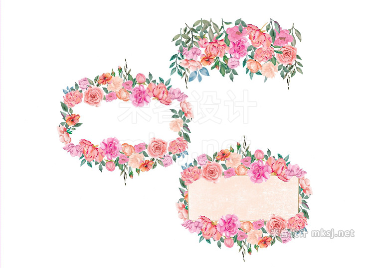 png素材 Watercolor Peony Rose Collection