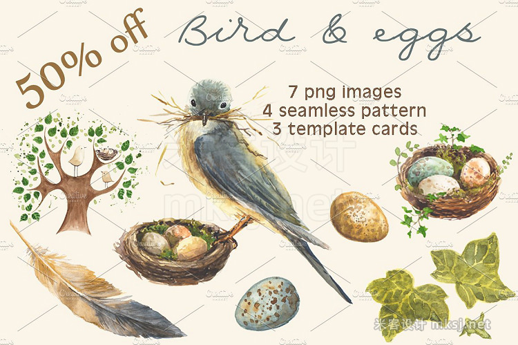 png素材 Bird and eggs