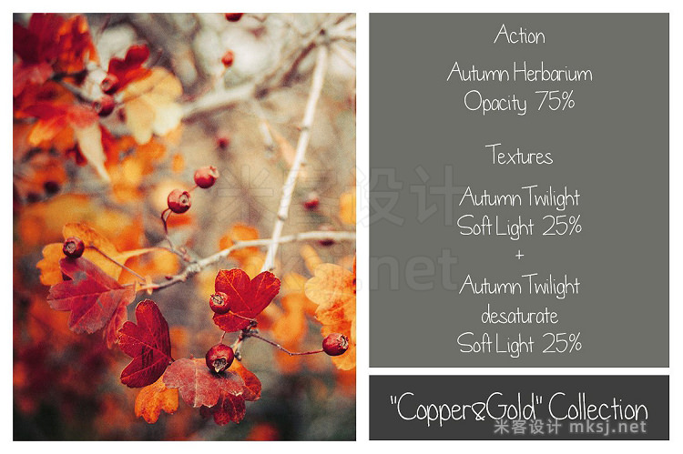 png素材 140  Autumn Effects