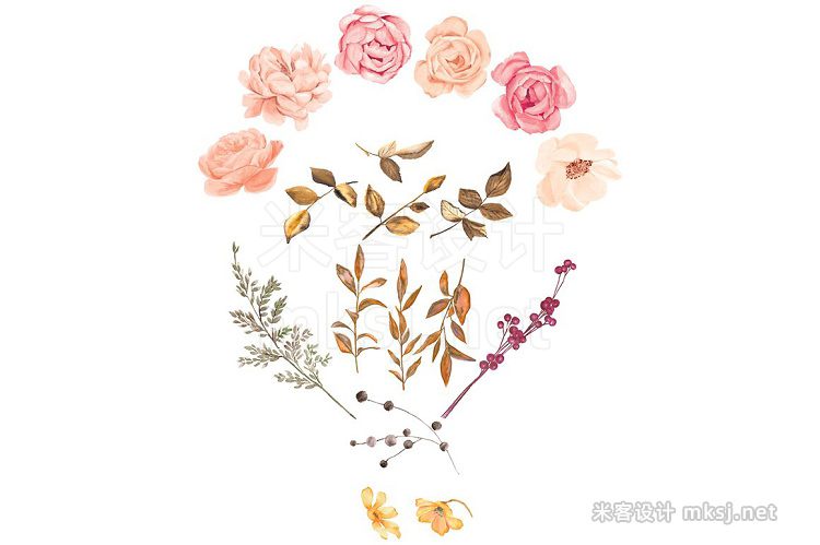 png素材 Watercolor Blush Gold Roses Clip Art