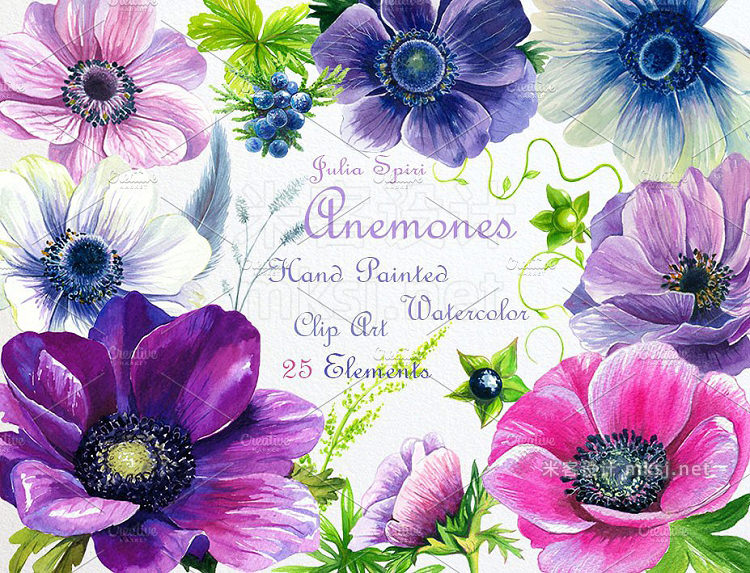 png素材 Watercolor Flowers ClipArt Anemones