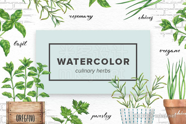 png素材 Watercolor Culinary Herbs