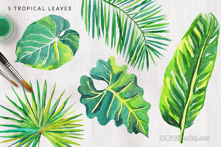 png素材 Tropical palm leaves