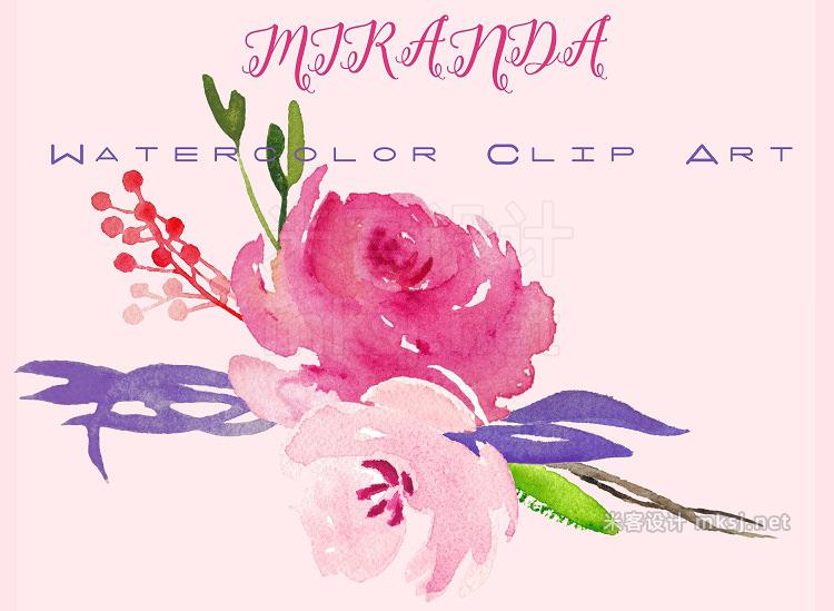 png素材 Miranda roses Watercolor Clipart