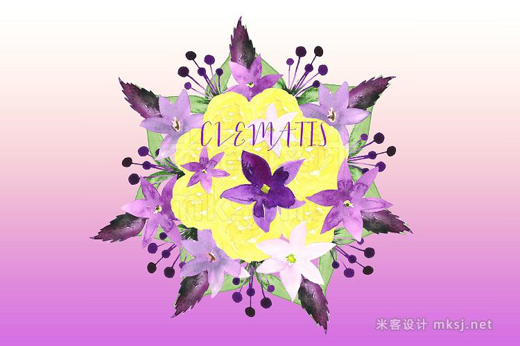 png素材 Clematis Purple Watercolor clip art