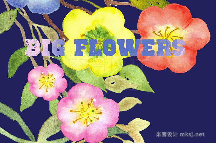 png素材 Big Flowers watercolor clip art