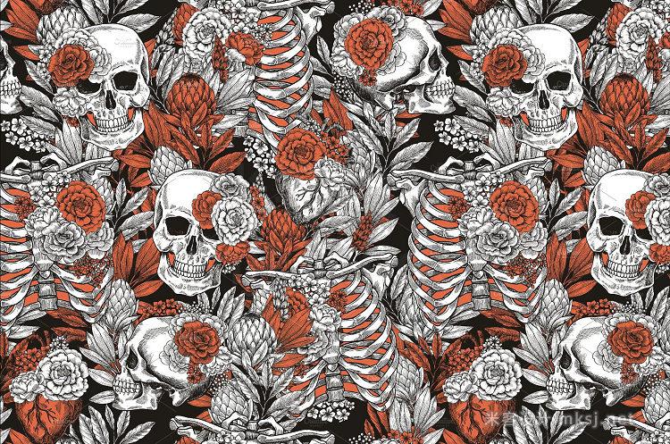 png素材 Floral Anatomy