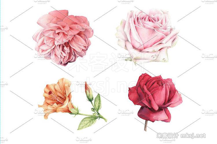 png素材 Summer flowers set