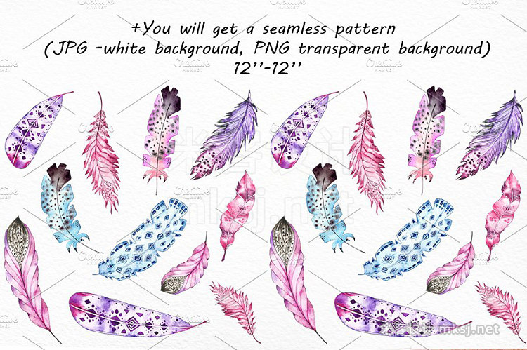 png素材 Watercolor Feathers clip art