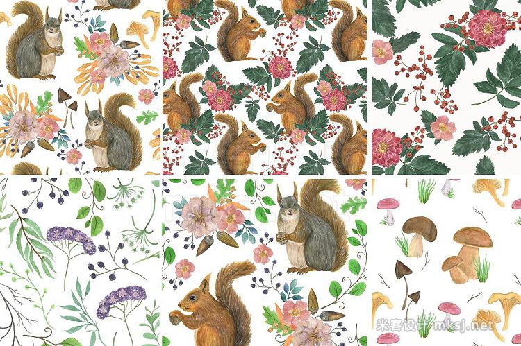 png素材 Good squirrels