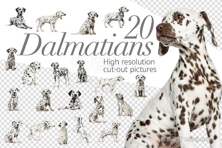png素材 20 Dalmatians - Cut-out Pictures