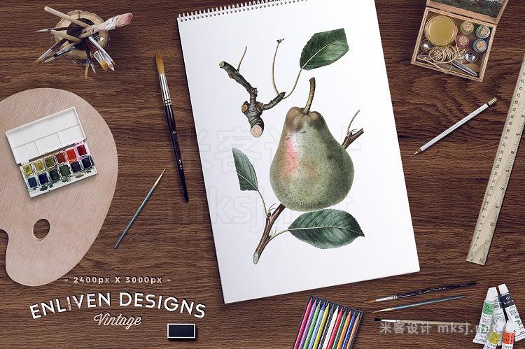 png素材 Watercolor Fruits Bundle Set 01