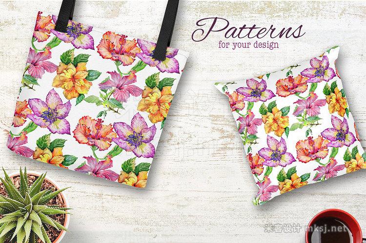 png素材 Hibiscus PNG watercolor flower set