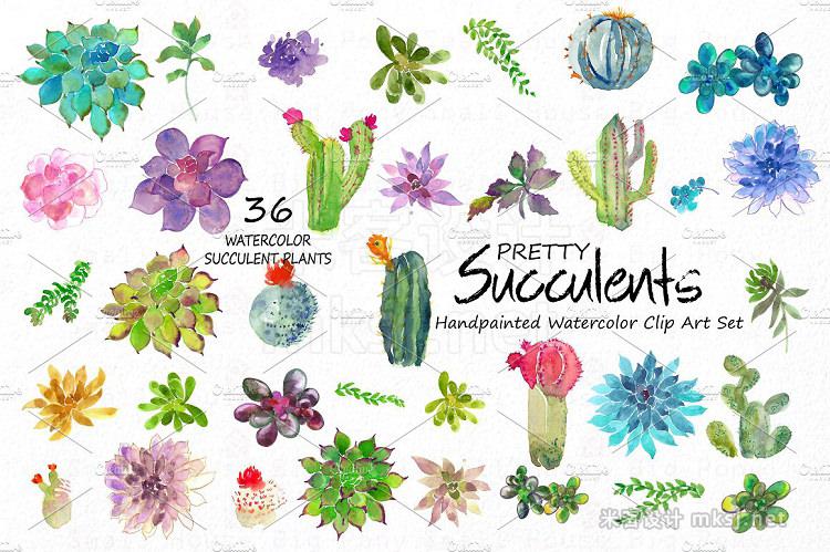 png素材 Pretty Succulents- Watercolor