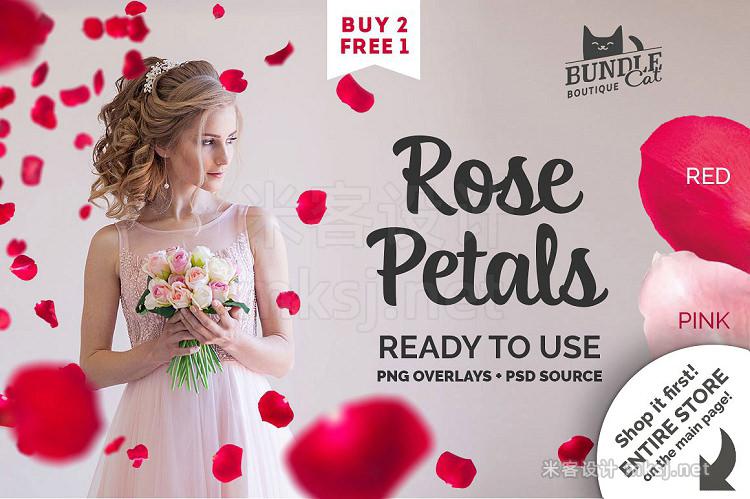 png素材 21 Rose Petal Photoshop Overlays