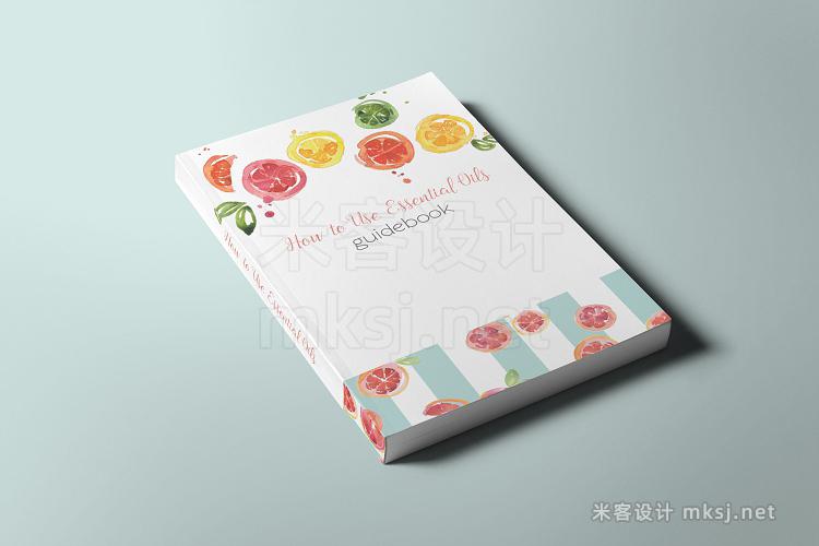 png素材 Citrus Watercolor Pack