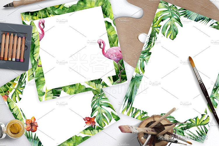 png素材 Rainforest tropical set