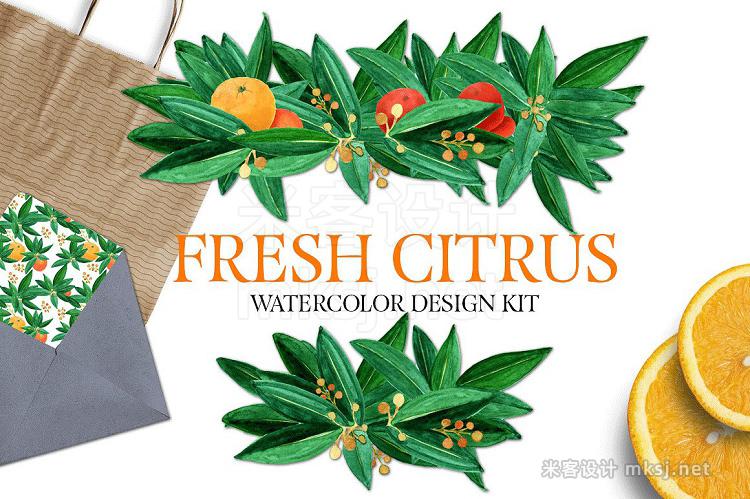 png素材 Fresh Citrus Watercolor Design Kit