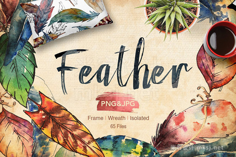 png素材 Feather bird PNG watercolor set