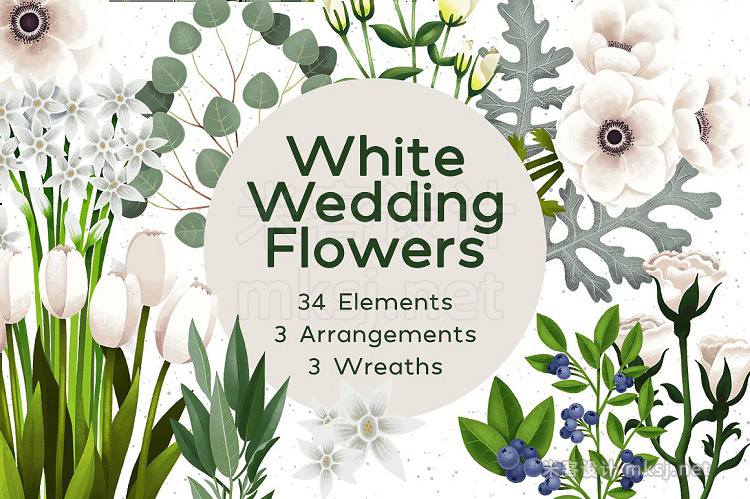 png素材 White Flowers