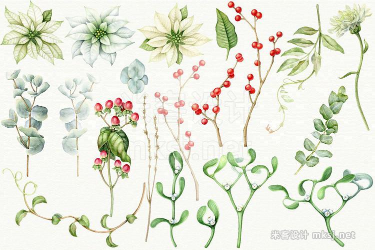 png素材 Winter floral set