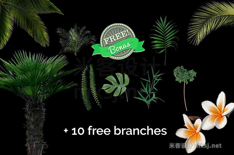 png素材 51 Tropic Tree Branch Photo overlays